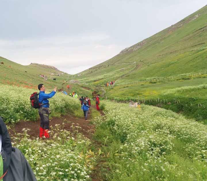 ورود به دره شقایق ها . هنوز فصل شقایق نرسیده و تعدادشون خیلی کمه . همه غنچه اند . کاش یک هفته دیر تر می آمدیم .