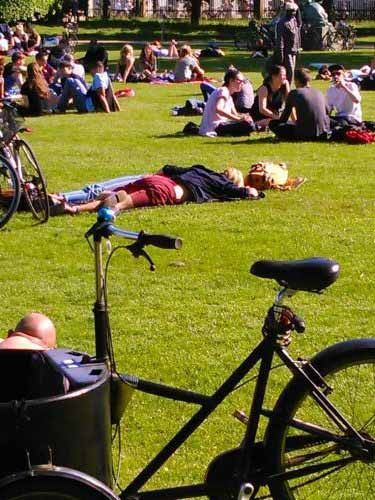مردم در حال استراحت در زیر آفتاب در پارک