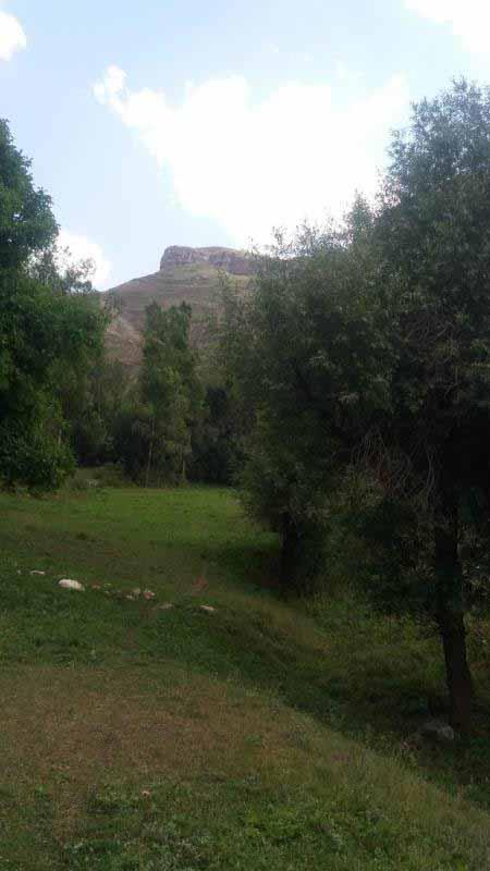 تصویر کوه های اطراف از باغ های داخل روستا