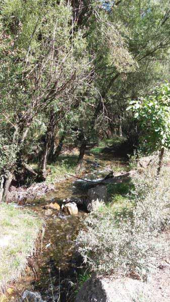 رودخانه در تمام طول مسیر همسفر ماست .