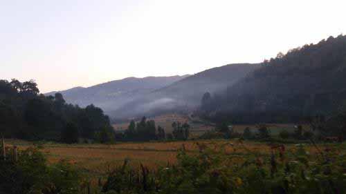 دره مه گرفته مته کلا - هوا خنک بود و دلچسب