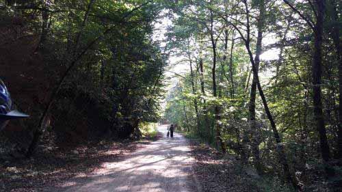 مسیر از سمت جوارم به لفور جنگلی ، زیبا و دست نخورده است .