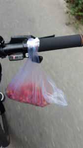 ذغال اخته در عاشقلو . آویزون به فرمون دوچرخه . در ضمن نمک هم داشتیم . دهنتون آب بیفته ....