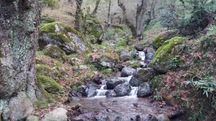 مسیر کلبه ها تا آبشار لاتون