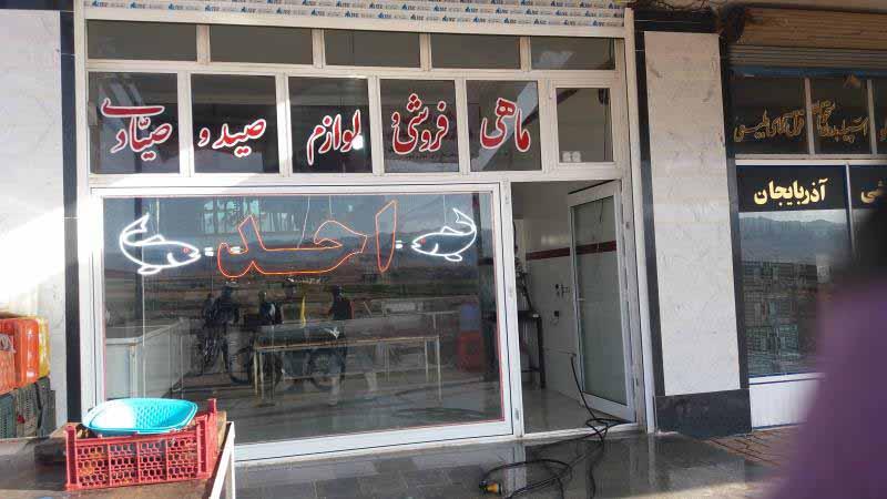 بازار ماهی در شهرک آراز