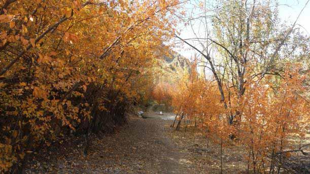پاییز زیبای شهرستانک