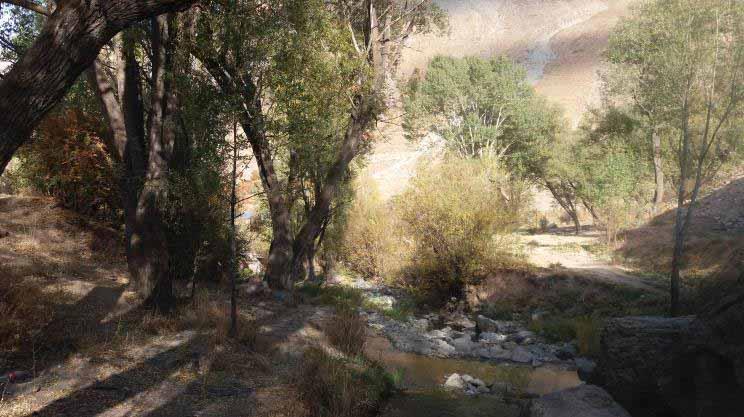 لب رود ، کنار کاخ ناصری