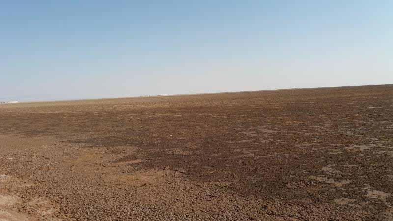 خاک بسیار نرم در حاشیه دریاچه ، اینجاها در فصل بارندگی ، نرم و فرورونده اند . باتلاقی با عمق کم