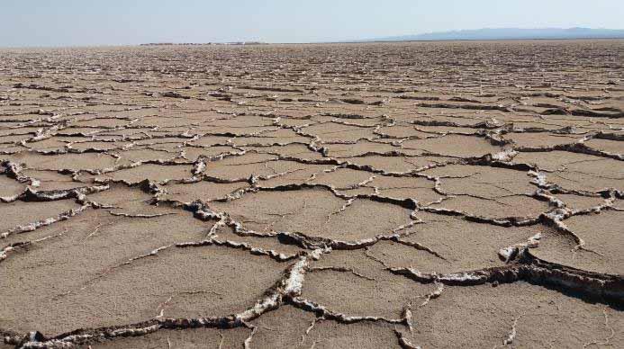 مرحله دوم ترک ها - نمک سخت در حاشیه سلول هایی از جنس خاک . هم خاک و هم نمک ، تا حدودی سخت اند .