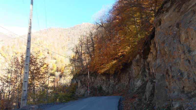 پاییز ، سنگ تمام گذاشته بود و همه جا زیبا بود .