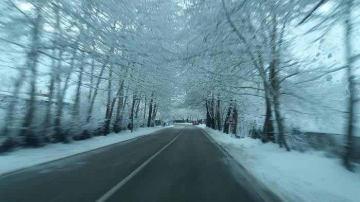 صبح زود روز زمستانی در جاده چالوس