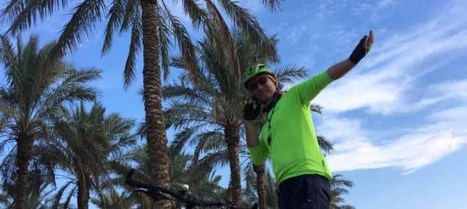 سفر به سرزمین نخل و آفتاب و دریا – بوشهر