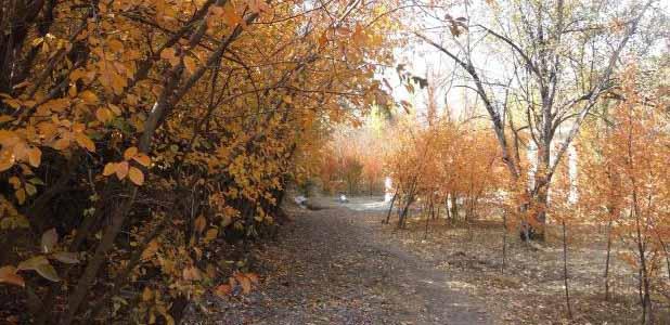 جشنواره رنگ ها در پاییز شهرستانک