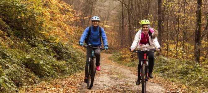 سفری پاییزی به جنگل های راش سنگده